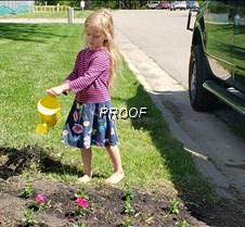 adopt flower bed