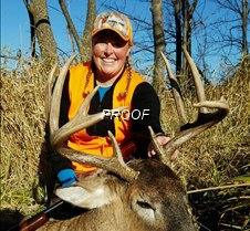 deer lisa Bassett