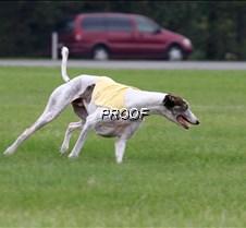 Run2_Course1_IMG_6351 copy