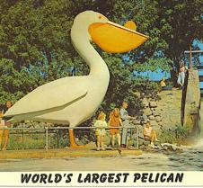 Remember pelican pete