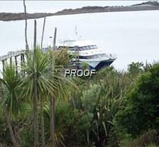 Tiri Hauraki Gulf AKL NZ