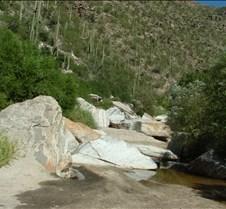 Tucson Sabino Canyon 8