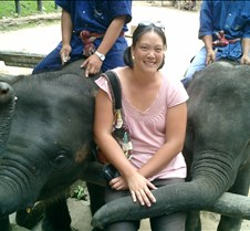 191 me and elephants