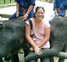 191 me and elephants