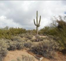 Scottsdale, Arizona 094