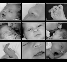 Newborn+Family