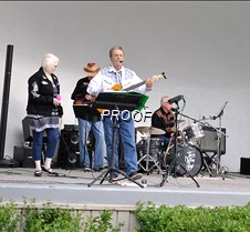 musicinpark-Terry Nelson Band