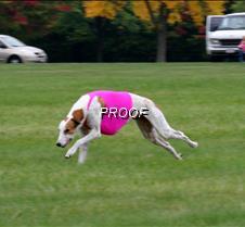 Run2_Course4_IMG_6424 copy