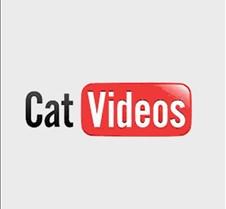CatVideos