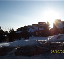 Red Pine Condos