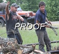 070613_Wood Stacking Wildart02