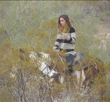 Scottsdale, Arizona 062