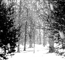 snowfall2-chalk