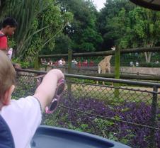 EUA e  Zoologico 070