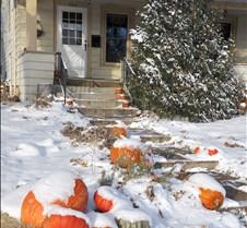 pumpkins-new season