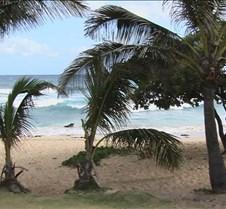 Sandy Beach 12 4-25-05