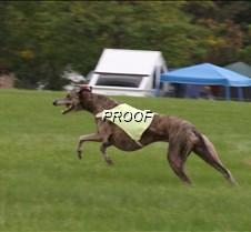 Run2_Course2_IMG_6371 copy