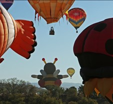 """The 2nd Of Two """"Hare"""" Balloons Sets Down"""
