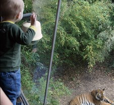J Zoo 0611_061