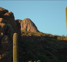 Tucson desert 3