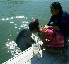 Dolphin kissing Dorie