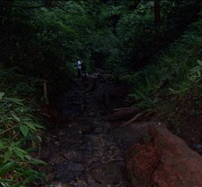 Trail 6 River trail on Takao