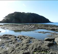Goat Island Marine Reserve Nth Akl NZ