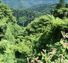 View off Takao looking down