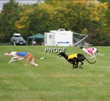Run2_Specials _Course2_2660 copy