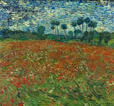 Poppy Field - Vincent van Gogh - 1890