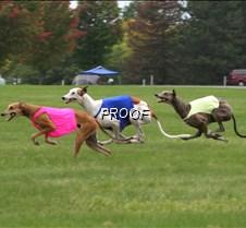 Run2_Course2_IMG_6361 copy