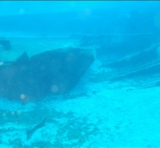 The Odessey Wreck