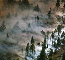 Sierraville, Calif. wildfire Sierraville, Calif. wild fire
