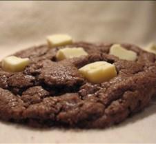 Cookies 103